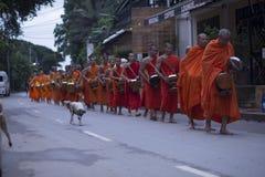 Luang Prabang, le Laos, moines et chiens dans l'aumône donnant la cérémonie, image stock