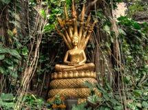 Luang Prabang und der Mekong von Mt Phousi Stockfotografie