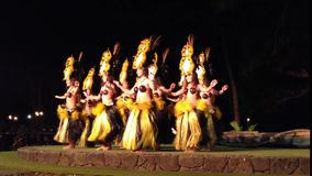 Luau maui stock video footage