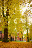 Lubeck Cathedral in autumn Royalty Free Stock Photos