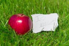 Lubię jabłka! Obraz Royalty Free