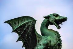 Lubiana drake Arkivbild