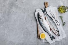 Lubina fresca de la lubina de los pescados crudos con romero y sal del mar en fondo de piedra gris fotografía de archivo