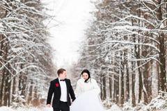 Ślubna para w zimie Obraz Royalty Free