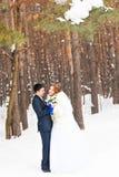 Ślubna para w zimie Zdjęcia Royalty Free