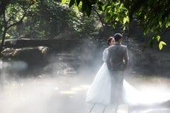 Ślubne fotografie w mgle Zdjęcia Stock
