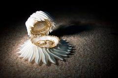 Ślubni akcesoria Obraz Royalty Free