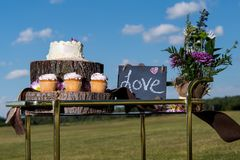 Ślubny tort i fundy fotografia stock