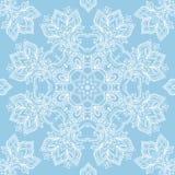 Biel koronka na błękitnym tle Obraz Royalty Free
