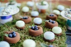 Ślubnych tortów cukierki w cukierku barze i desery Obrazy Stock