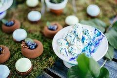 Ślubnych tortów cukierki w cukierku barze i desery Zdjęcia Royalty Free