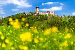 The Lubovna castle, Slovakia Stock Photography
