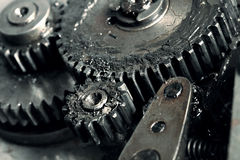 Lubricated gears of vehicular transmission. Macro Royalty Free Stock Photography