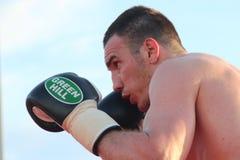 Luca Tassi boxer Royalty Free Stock Photo