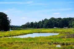 Lucas Creek Road dans des actualités de Newport, la Virginie Photographie stock libre de droits