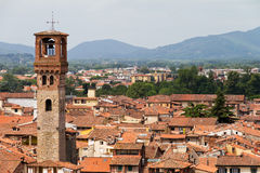 Lucca塔视图 免版税库存照片