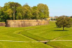 lucca οχυρώσεων πόλεων τοίχο&sig Στοκ Φωτογραφία