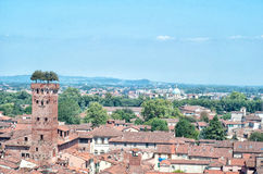 Lucca, aerial panoramic view Royalty Free Stock Photography