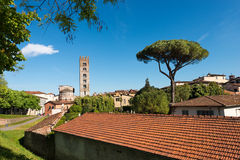 Lucca with the Basilica of San Frediano - Italy Royalty Free Stock Images