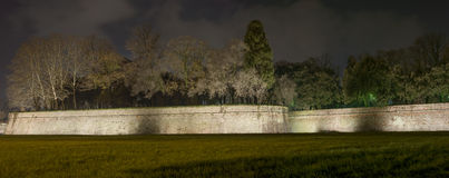 Lucca city walls and trees. Panoramic night view. Tuscany, Italy. Lucca medieval city walls and trees. Panoramic night view Tuscany, Italy, Europe Stock Photos