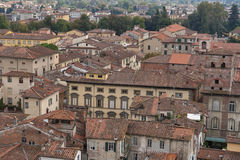 Lucca cityscape from the Guinigi tower, Italy Royalty Free Stock Photo