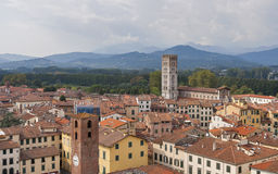 Lucca cityscape from the Guinigi tower, Italy Royalty Free Stock Photos