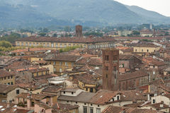 Lucca cityscape from the Guinigi tower, Italy Stock Images