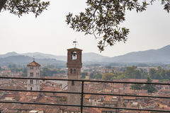 Lucca cityscape from Guinigi Tower, Tuscany, Italy Stock Images