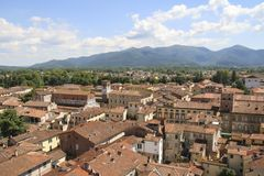 Lucca miasta, Tuscany widok od basztowego Guinigi fotografia stock