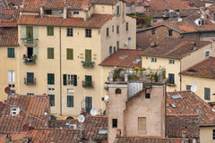 Lucca residential houses Stock Images