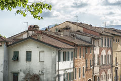 Lucca roof in different style in Italy Stock Images