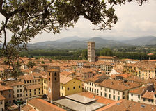 Lucca rooftops Royalty Free Stock Photo