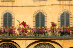 Lucca, three closed windows Stock Photos