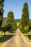 Lucca (Toscânia) - casa de campo antiga com ciprestes foto de stock