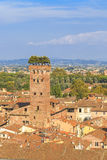 Lucca tower royalty free stock photos