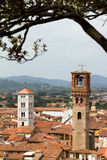 Lucca towers Royalty Free Stock Photography