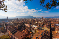 Lucca view from Guinigi Tower. Stock Photo