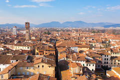 Lucca view from Guinigi Tower. Royalty Free Stock Image