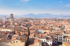 Lucca view from Guinigi Tower. Stock Photos