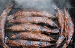 Luccio affumicato del pesce nell'affumicatoio Fotografie Stock