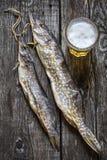 Luccio del pesce: secco, secco con un vetro di birra Immagine Stock Libera da Diritti