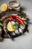 Luccio raffreddato su un piatto, fondo di pietra del pesce con i cubetti di ghiaccio, erbe aromatiche, spezie Vista superiore Con fotografia stock