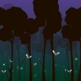 Lucciole nella foresta alla notte Fotografie Stock