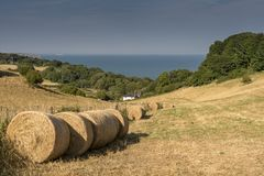 Luccombe, Isle of Wight, England Royalty Free Stock Images