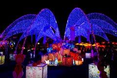 Luce al neon durante il nuovo anno Fotografia Stock