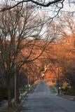 Luce arancio di Alpenglow di alba iniziale sulla montagna Immagine Stock Libera da Diritti