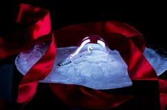 Luce congelata Fotografie Stock