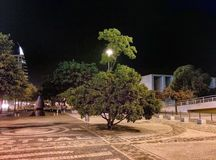 Luce dell'albero in casinò Lisbona Fotografie Stock