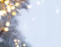Luce dell'albero di Natale Fotografia Stock