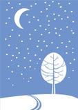 Luce della luna di inverno Fotografia Stock Libera da Diritti